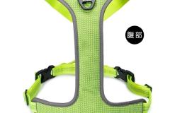 TLH6071-Neon yellow (3)